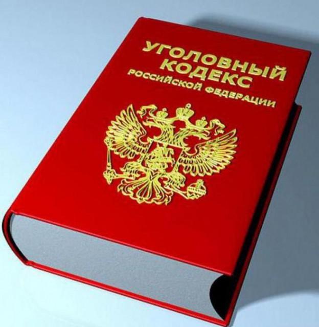 """Новые """"экономические"""" статьи в уголовном кодексе"""
